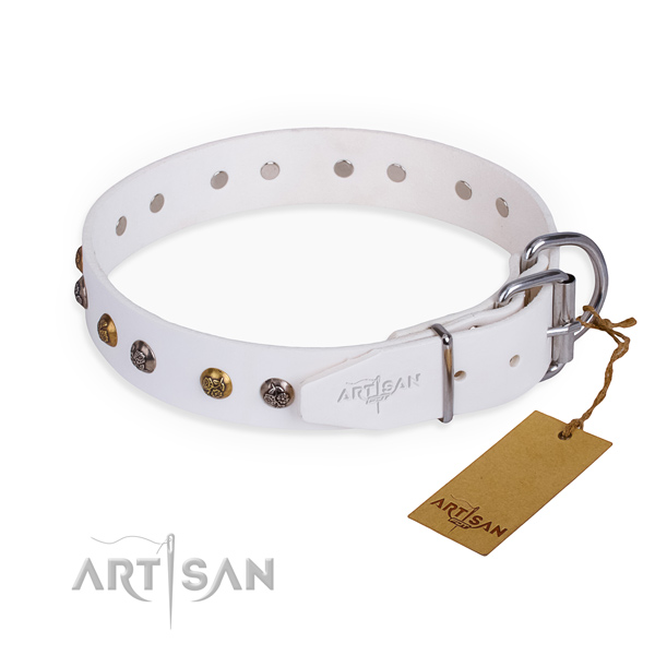 Full grain natural leather dog collar with exceptional rust-proof embellishments