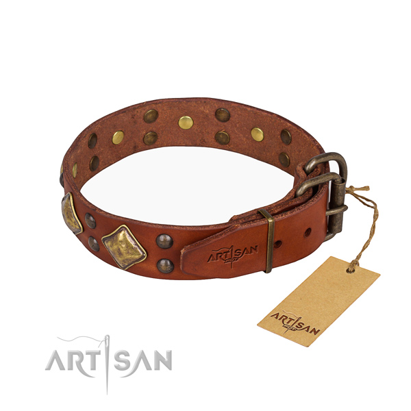 Natural leather dog collar with exceptional corrosion proof adornments