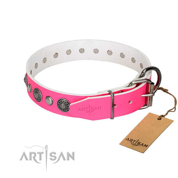 Durable leather dog collar with rust resistant buckle
