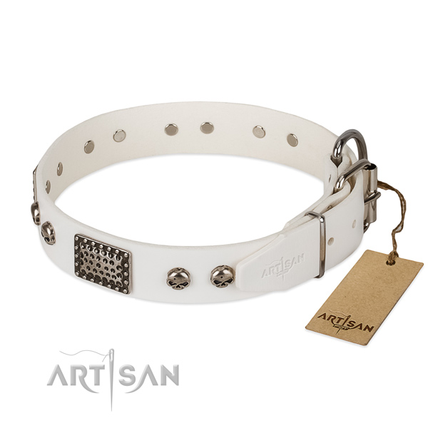 Durable adornments on comfortable wearing dog collar