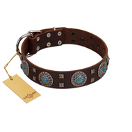 """Hypnotic Stones"" FDT Artisan Brown Leather Dogue de Bordeaux Collar with Chrome Plated Brooches and Square Studs"