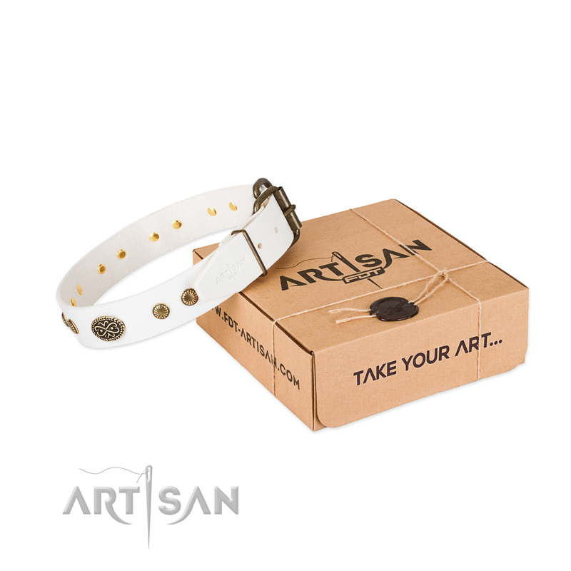 Reliable studs on full grain leather dog collar for your four-legged friend