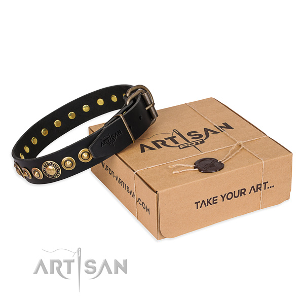 High quality leather dog collar created for stylish walking