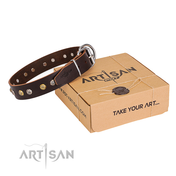 Top rate full grain leather dog collar created for stylish walking