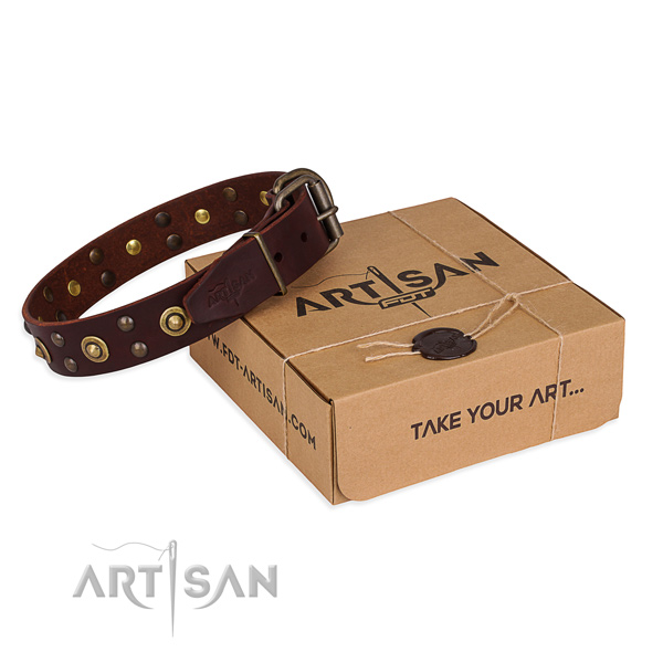 Rust resistant fittings on genuine leather collar for your handsome canine