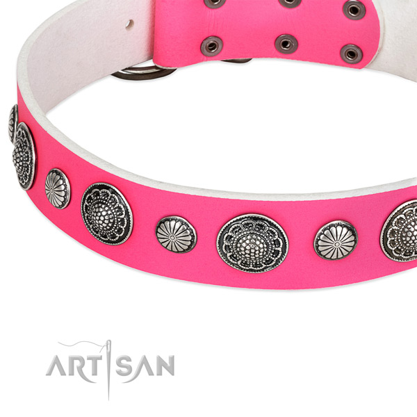 Leather collar with durable hardware for your lovely canine