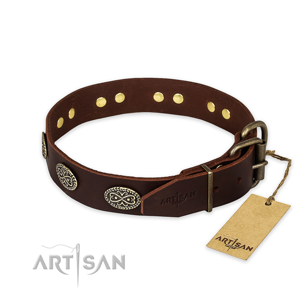 Strong traditional buckle on natural genuine leather collar for your handsome doggie