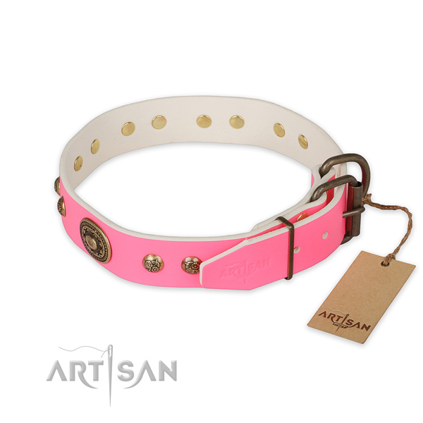 Durable traditional buckle on full grain natural leather collar for daily walking your dog
