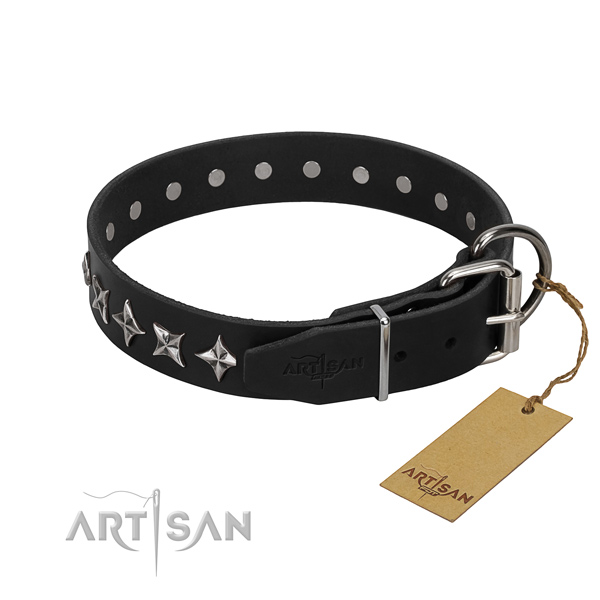 Daily walking studded dog collar of fine quality natural leather