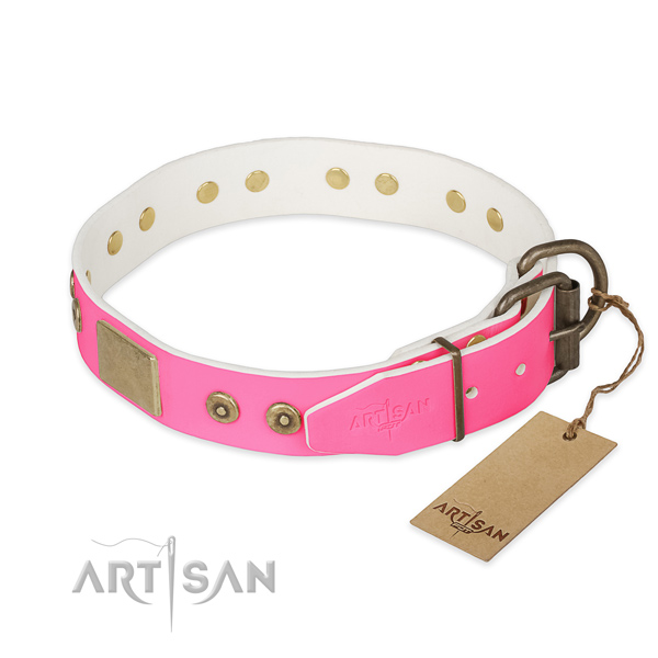 Rust-proof fittings on stylish walking dog collar