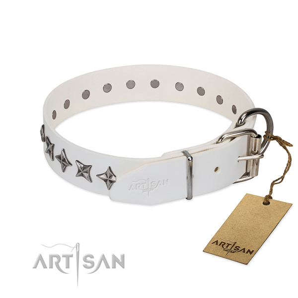 Top quality leather dog collar with extraordinary decorations