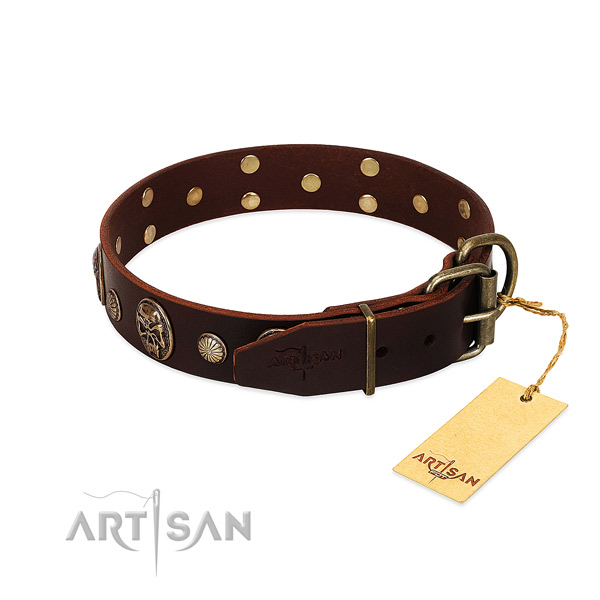 Reliable decorations on walking dog collar