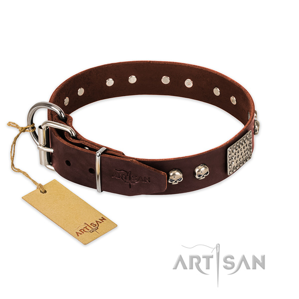 Corrosion proof buckle on easy wearing dog collar