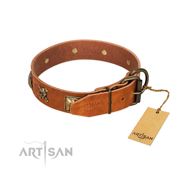 Trendy genuine leather dog collar with durable decorations