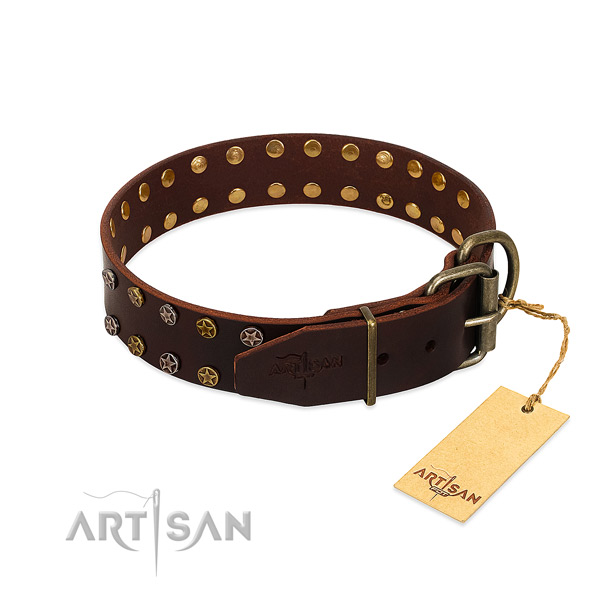 Daily walking full grain genuine leather dog collar with amazing studs