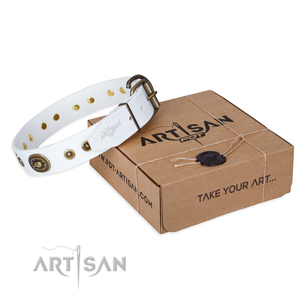 Full grain leather dog collar made of quality material with strong buckle
