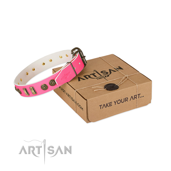 Rust-proof adornments on natural leather dog collar for your doggie