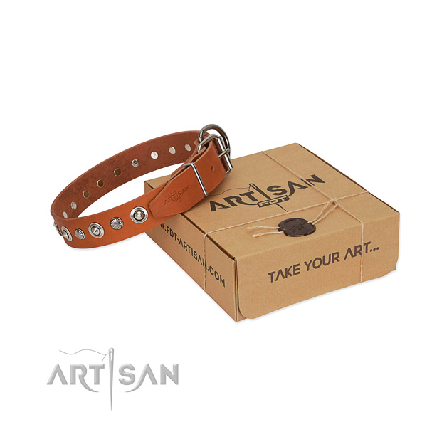 Strong full grain natural leather dog collar with incredible adornments