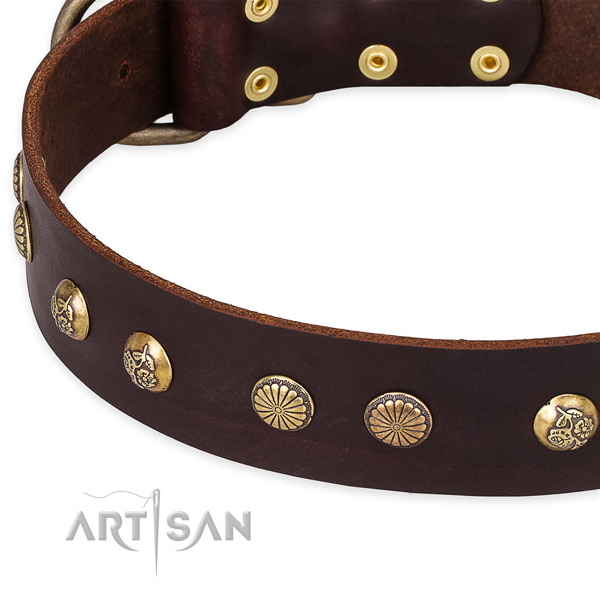 Natural genuine leather collar with reliable hardware for your lovely dog