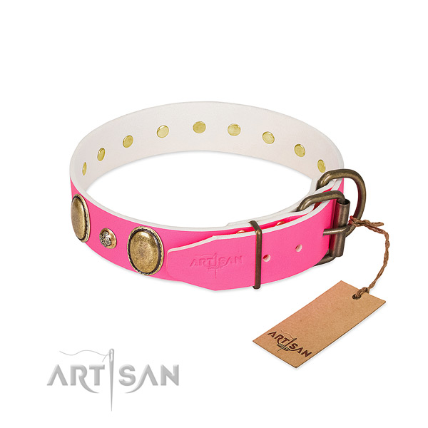 Daily walking top rate natural genuine leather dog collar