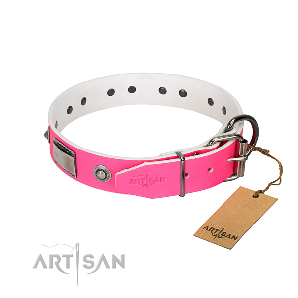 Inimitable dog collar of natural leather with studs