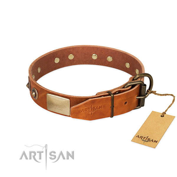 Durable fittings on easy wearing dog collar