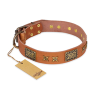 """Cosmic Traveller"" FDT Artisan Adorned Leather Dogue de Bordeaux Collar with Old Bronze-Plated Stars and Plates"