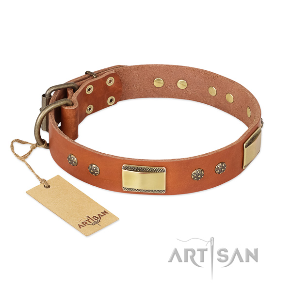 Stylish natural genuine leather collar for your dog