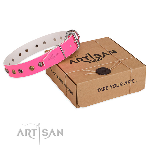 Daily use dog collar with Extraordinary strong adornments