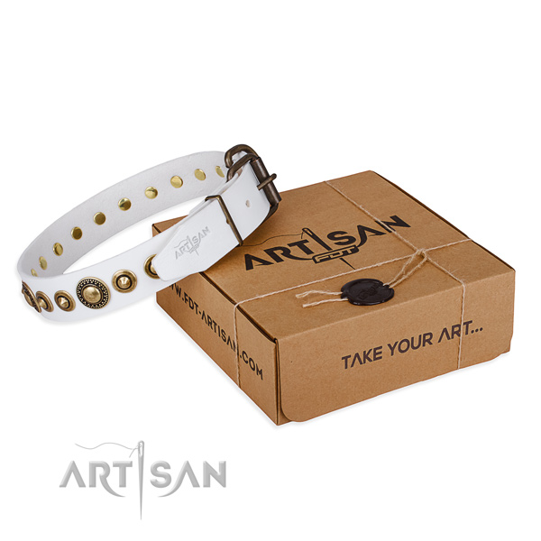 Soft to touch genuine leather dog collar made for everyday use