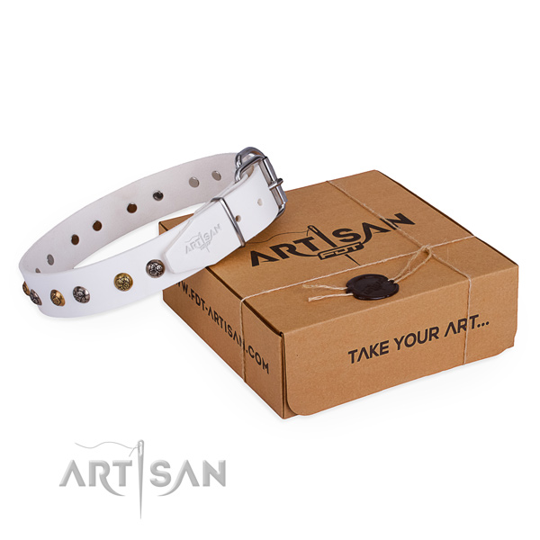 Handy use dog collar with Stylish design corrosion resistant adornments