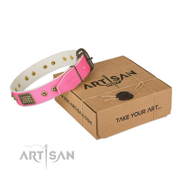 Durable traditional buckle on dog collar for stylish walking