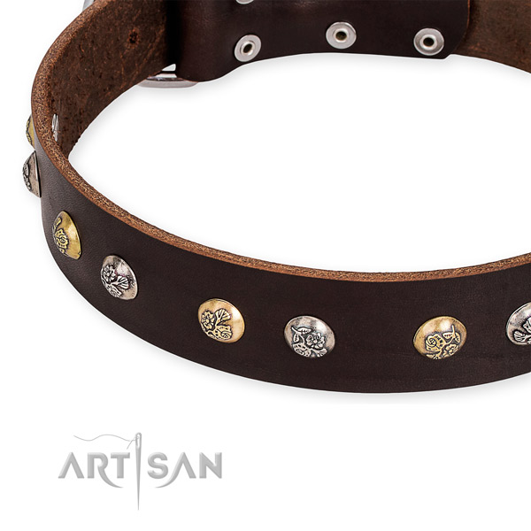 Full grain genuine leather dog collar with designer corrosion proof adornments
