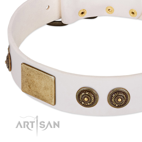 Stylish dog collar made for your handsome pet