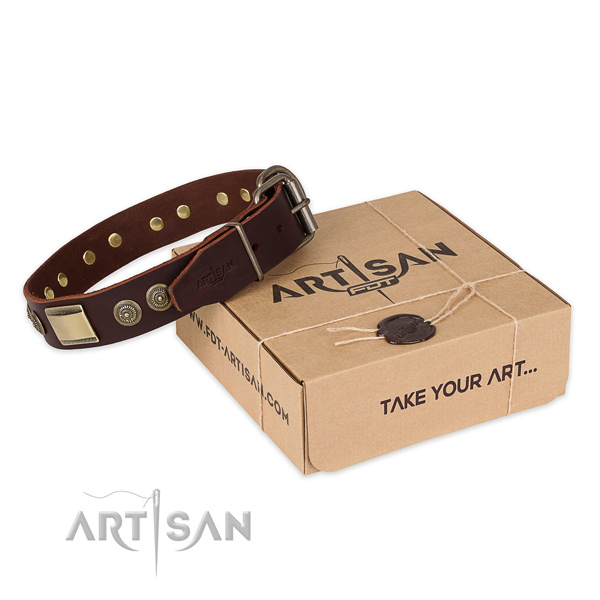 Reliable buckle on full grain natural leather dog collar for walking