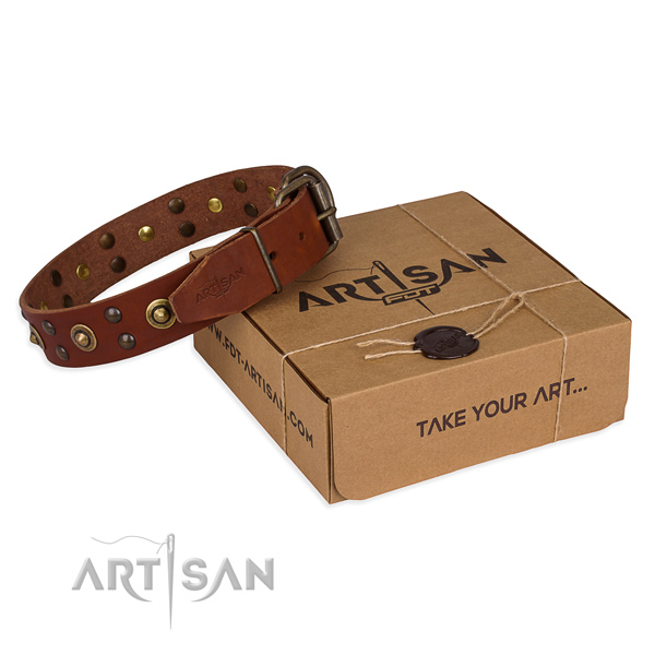 Corrosion proof buckle on full grain genuine leather collar for your impressive dog