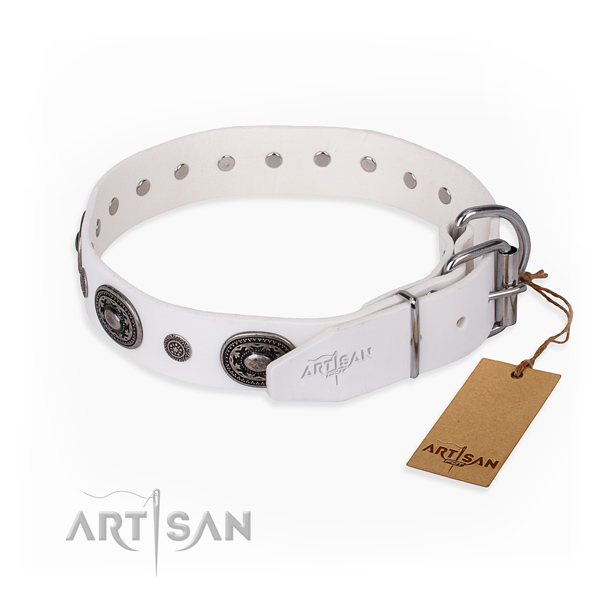 High quality leather dog collar made for everyday use