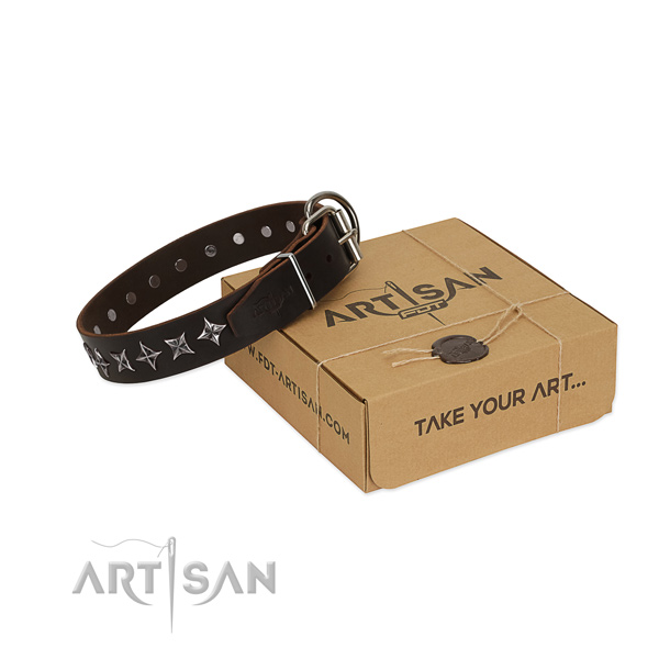 Daily use dog collar of finest quality full grain genuine leather with studs