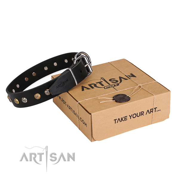 Top rate full grain genuine leather dog collar crafted for stylish walking