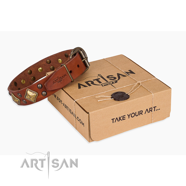 Daily use dog collar with Stylish durable decorations