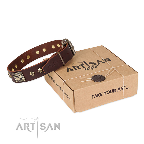 Impressive genuine leather collar for your beautiful four-legged friend