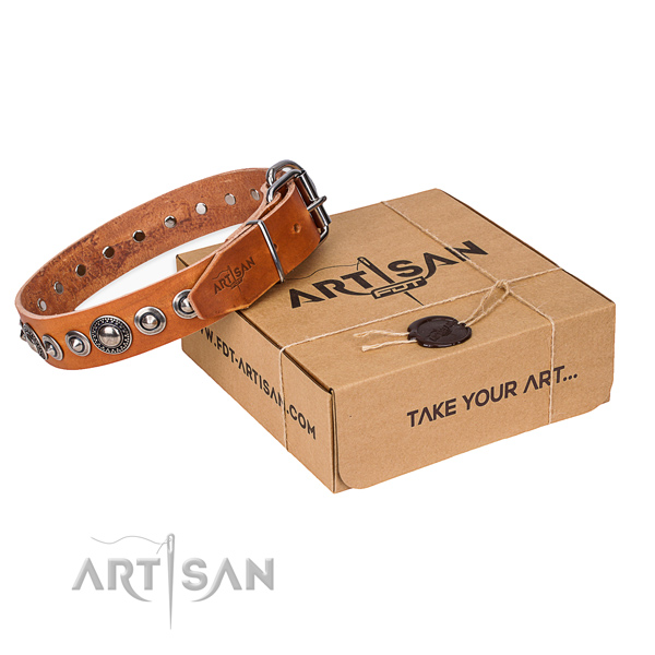 Full grain natural leather dog collar made of soft to touch material with reliable hardware