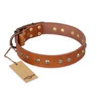 """Spring Flavor"" FDT Artisan Adorned Leather Dogue de Bordeaux Collar with Old Bronze-Plated Engraved Studs"