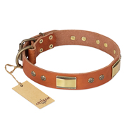 """Enchanting Spectacle"" FDT Artisan Tan Leather Dogue de Bordeaux Collar with Old Bronze Look Plates and Round Studs"