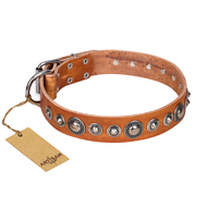 """Daily Chic"" FDT Artisan Tan Leather Dogue de Bordeaux Collar with Decorations"