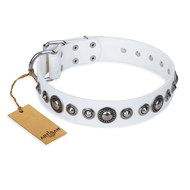"""Ice Age"" FDT Artisan White Studded Leather Dogue de Bordeaux Collar"