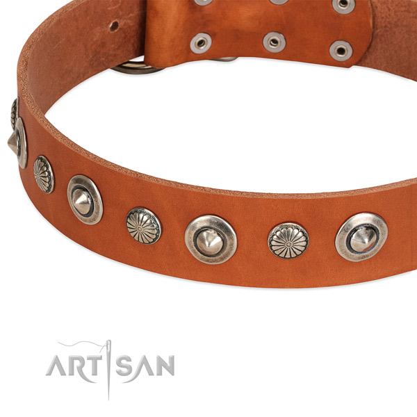 Full grain genuine leather collar with corrosion resistant traditional buckle for your beautiful dog