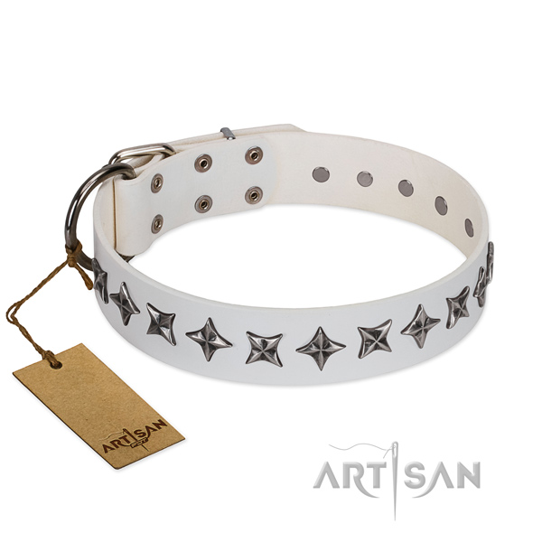 Comfy wearing dog collar of top quality leather with decorations