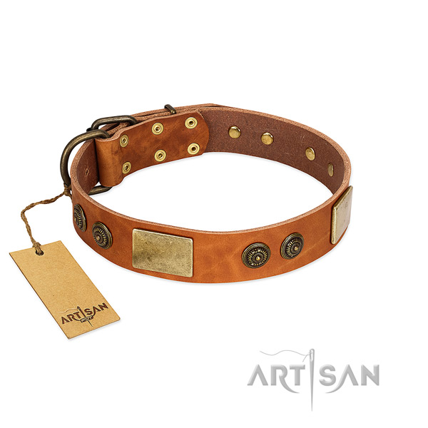 Adjustable full grain genuine leather dog collar for daily use