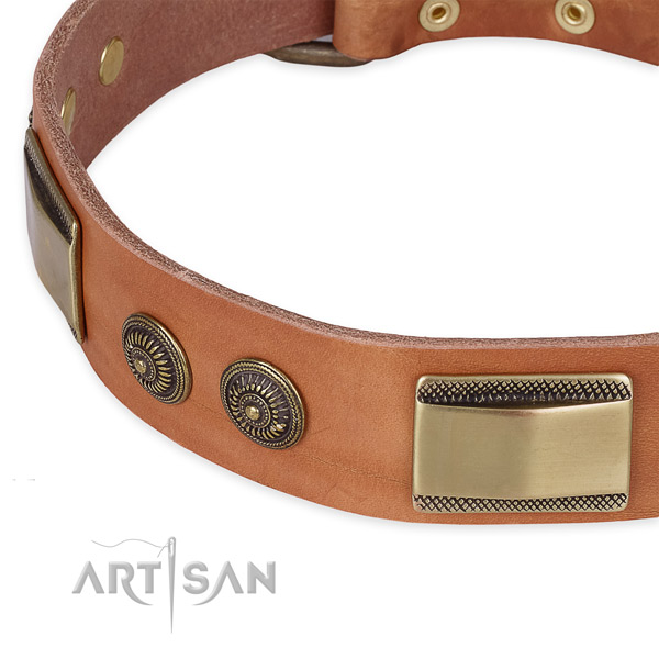Significant leather collar for your lovely canine